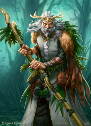 druid costume